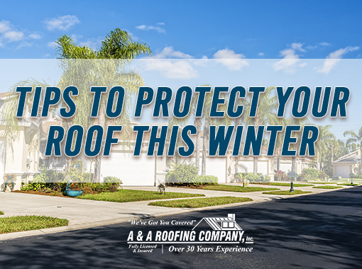 10 tips to protect your florida roof this winter
